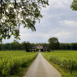 Vineyard in Burgundy — Stock Photo #1571501