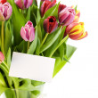 Bouquet of tulips with a blank gift card — Stock Photo #1703520
