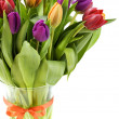 Fresh tulips - Stock Photo