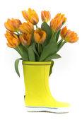 Little rain boot and fresh tulips — Stock Photo