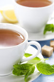 Fresh herbal mint tea — Stock Photo
