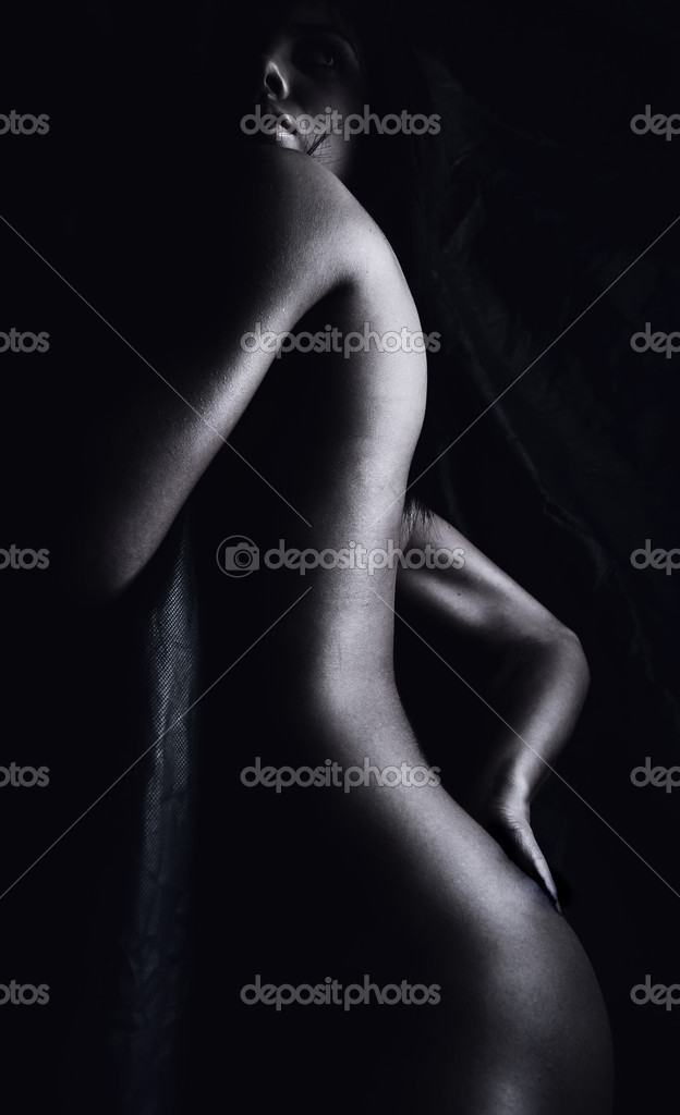 Classical silhouette nude. Photo. — Stock Photo #1260614