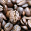 Coffeebeans - Stock Photo