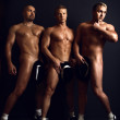 Three adult men in a good sports tone — Stock Photo