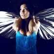 Stock Photo: Beauty with silvery wings of moth