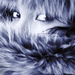 Stock fotografie: Young elegant girl hide in fur.