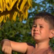 The boy with a sunflower flower — Stock Photo