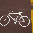 Roadside Bicycle Lane Detail — Stock Photo