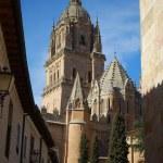 Alamanca Cathedral, Spain — Stock Photo