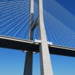 图库照片: Vasco dGamBridge over River Tagus in