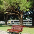 Wooden bench on a park and a train passi — Stock Photo