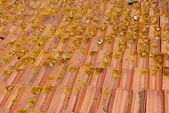 Old and dirty roof tiles (sideview) — Stock Photo