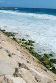Portuguese shoreline in a bright day — Stock Photo