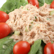 Royalty-Free Stock Photo: Tuna fish and spinach salad