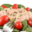 Tuna fish and spinach salad — Stock Photo #1969540