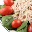 Tuna fish and spinach salad — Stock Photo #1969564