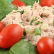 Tuna fish and spinach salad — Stock Photo #1969584
