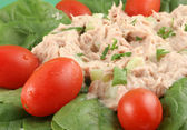 Tuna fish and spinach salad — Stock Photo