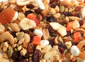Dried fruit, nut and seed mix — Stock Photo