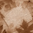 Sepia leaf background - Stock Photo