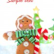 Gingerbread man winter - Stock Photo
