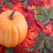 Fall leaves and pumpkin — Stock Photo #1978632
