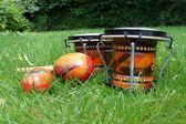 Bongos and maracas on grass — Stock Photo