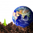 Stock Photo: Ecologial earth