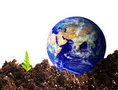 Ecologial earth — Stock Photo