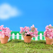 Stock Photo: Spring flower miniatures