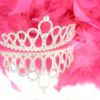 Stock Photo: Tiara and boa