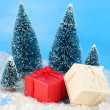 Winter christmas presents — Stock Photo #2290408