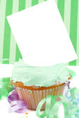 Blank card cupcake — Stock Photo