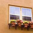 Window with flowers — Stock Photo #1336177