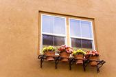 çiçek ile pencere — Stok fotoğraf