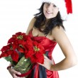 Teen Girl Santa with Poinsettia flower - Stock Photo