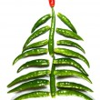 Chili New Year Tree - Stock Photo