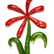 Flower from chili pepper - Stock Photo