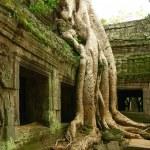 Kamboçyalı antik tapınak çalışır — Stok fotoğraf