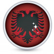 Albania flag button - Stock Vector
