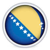 Bosnia and Herzegovina flag button — Stock Vector