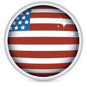 American flag button — Stock Vector