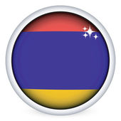 Armenian flag button — Stock Vector