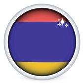 Armenian flag button — Stock Vector