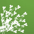 Stock Photo: Clover foliage
