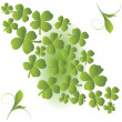 Clover background — Stock Photo
