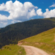Stock Photo: Mountain road landscape