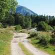 Stock Photo: Dirt road in mountains