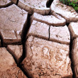 Cracks ground — Stock Photo #1248304