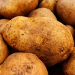 Potato tubers - Stockfoto